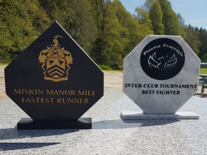 WELSH SLATE AND MARBLE TROPHY'S